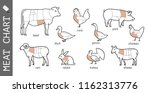 diagram of cutting meat. set of ... | Shutterstock .eps vector #1162313776