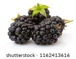 ripe blackberries with green...   Shutterstock . vector #1162413616