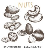nuts collection. nuts set... | Shutterstock .eps vector #1162482769