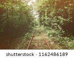 old narrow gauge railway among... | Shutterstock . vector #1162486189
