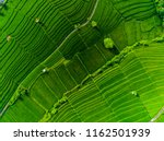 aerial view of the rice field... | Shutterstock . vector #1162501939