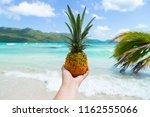 pineapple in hand on the beach. ... | Shutterstock . vector #1162555066