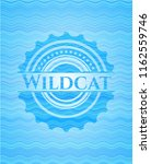 wildcat light blue water wave... | Shutterstock .eps vector #1162559746