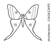 comet moth vector icon isolated ...   Shutterstock .eps vector #1162612693