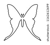 comet moth vector icon isolated ...   Shutterstock .eps vector #1162612699