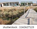 breeders at homing pigeon lofts.... | Shutterstock . vector #1162627123