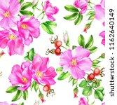 watercolor illustration of... | Shutterstock . vector #1162640149
