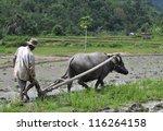 Bali Indonesia  Jan18    Farme...