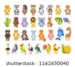 big set of animals and birds.... | Shutterstock .eps vector #1162650040