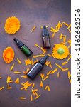 marigold or calendula essential ... | Shutterstock . vector #1162662556