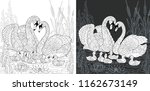 coloring page. coloring book.... | Shutterstock .eps vector #1162673149