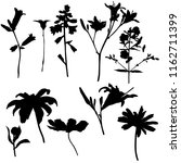 vector silhouettes of flowers ... | Shutterstock .eps vector #1162711399