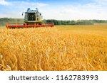 combine harvester harvests... | Shutterstock . vector #1162783993