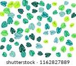 aquamarine tropical jungle...   Shutterstock .eps vector #1162827889