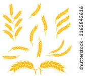 set gold wheat ears icons. for...   Shutterstock .eps vector #1162842616