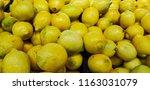 lemons fresh from the tree | Shutterstock . vector #1163031079