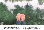 water shoes   swim shoe in pink ... | Shutterstock . vector #1163049070