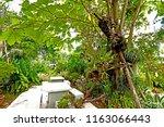 ratchaburi thailand september... | Shutterstock . vector #1163066443