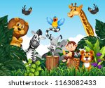 wild animals in the jungle... | Shutterstock .eps vector #1163082433