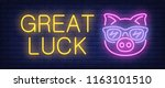 great luck neon text with pig... | Shutterstock .eps vector #1163101510
