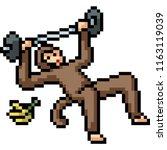vector pixel art fitness ape... | Shutterstock .eps vector #1163119039