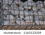 close up outdoor view of a... | Shutterstock . vector #1163123209