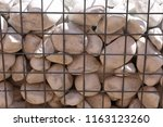 close up outdoor view of a... | Shutterstock . vector #1163123260