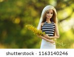 a beautiful barbie with white... | Shutterstock . vector #1163140246