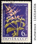 ussr   circa 1972  postage... | Shutterstock . vector #1163164336
