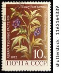 ussr   circa 1972  postage... | Shutterstock . vector #1163164339