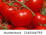 close up of red tomatoes on... | Shutterstock . vector #1163166793