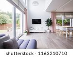 spacious living room interior...   Shutterstock . vector #1163210710
