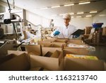 young female worker in sterile... | Shutterstock . vector #1163213740
