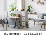 Real photo of bright living room interior with half-wall with posters and desk with books, fresh plants and window with curtains