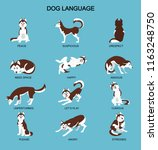 dog emotions meaning with cute... | Shutterstock .eps vector #1163248750