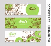 eating nuts and seeds banners.... | Shutterstock .eps vector #1163265220