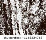 black and white texture of bark ... | Shutterstock .eps vector #1163334766