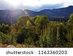 mountains  sub alpine woodland... | Shutterstock . vector #1163360203