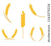 wheat ears logo. vector... | Shutterstock .eps vector #1163370226
