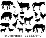 illustration with farm animals... | Shutterstock .eps vector #116337940