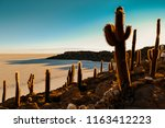 incahuasi island  in the middle ...   Shutterstock . vector #1163412223