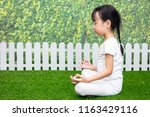 asian chinese little girl... | Shutterstock . vector #1163429116