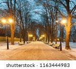 footpath in a fabulous winter... | Shutterstock . vector #1163444983