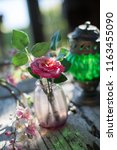 flower in a vase | Shutterstock . vector #1163455090
