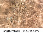 seabed under clear water | Shutterstock . vector #1163456599