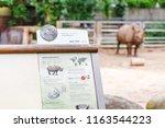 18 may 2018  berlin  germany ... | Shutterstock . vector #1163544223