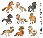 cute cartoon horses in wreaths...   Shutterstock .eps vector #1163595169