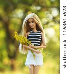 a beautiful barbie with white... | Shutterstock . vector #1163615623