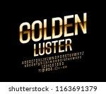 vector golden luster elegant... | Shutterstock .eps vector #1163691379
