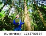 asian women working with...   Shutterstock . vector #1163700889